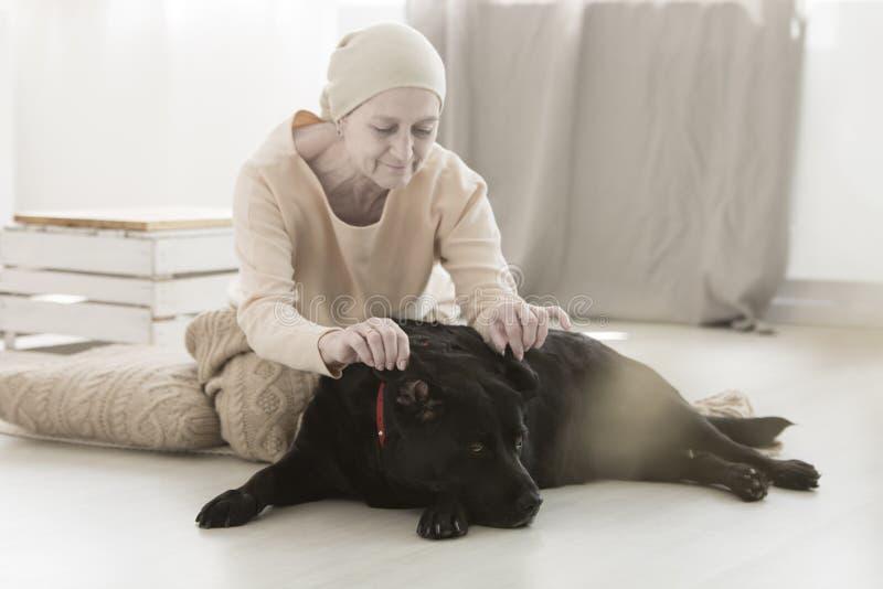 Het hogere vrouw spelen met hond stock afbeelding