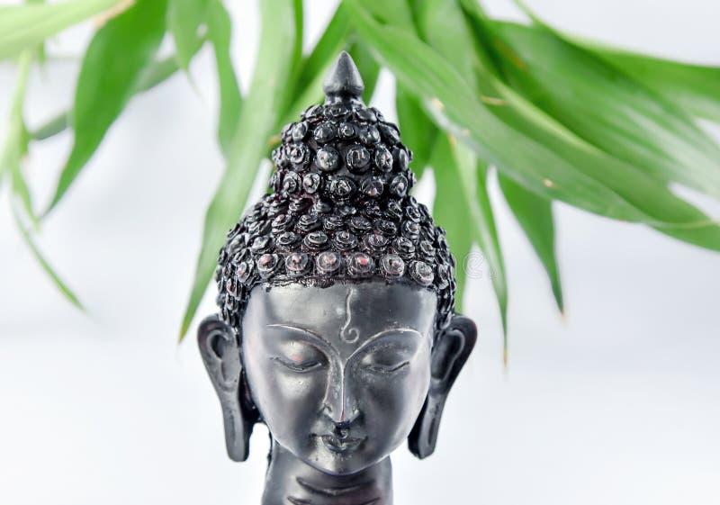 Het hoofd van Boedha stock afbeelding
