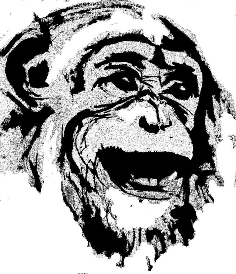 Het hoofd van de aap royalty-vrije illustratie