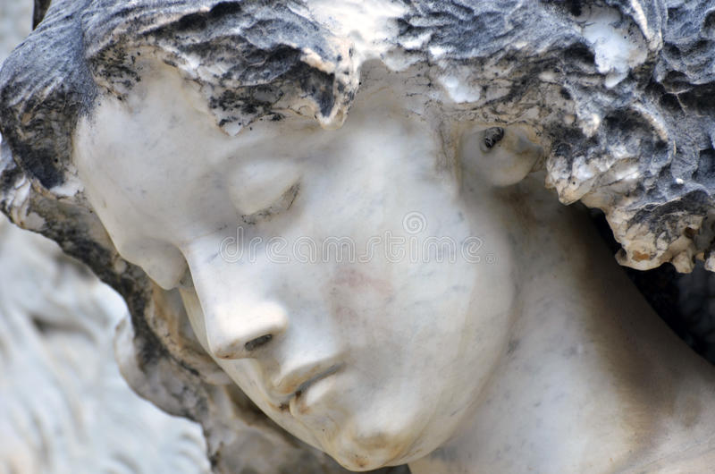 Het hoofd van de engel, sluit omhoog royalty-vrije stock foto