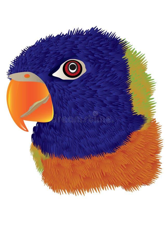 Het Hoofd van de papegaai stock illustratie