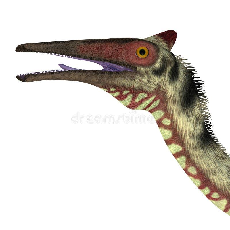 Het Hoofd van de Pelecanimimusdinosaurus royalty-vrije illustratie