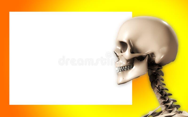Het Hoofd van de schedel met Leeg Teken royalty-vrije illustratie
