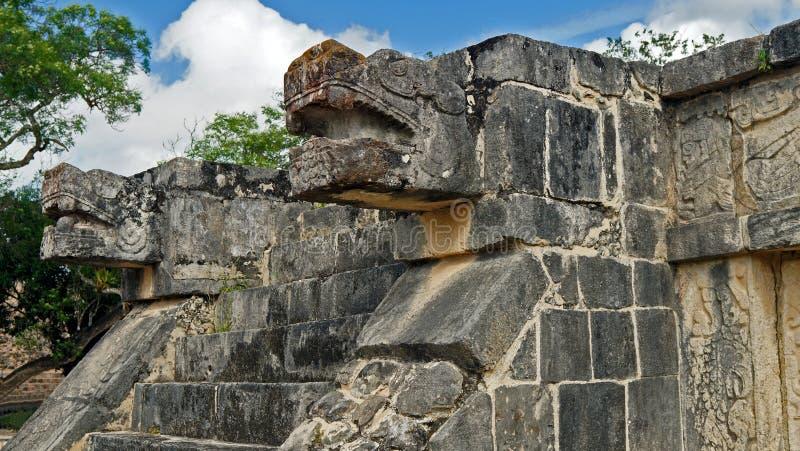 Het hoofd van de slangsteen in de wildernis van Yucatan stock afbeeldingen