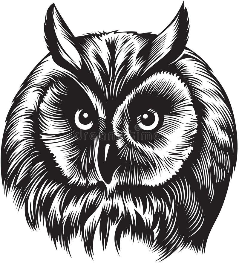 Het hoofd van de uilvogel stock illustratie