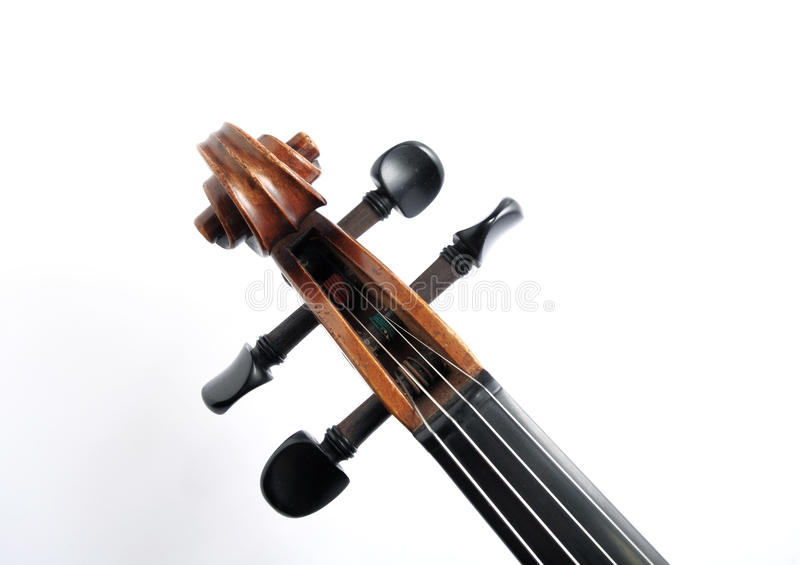 Het hoofd van de viool stock afbeeldingen