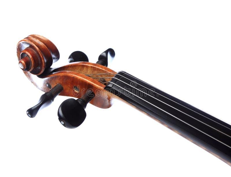 Het hoofd van de viool stock foto's