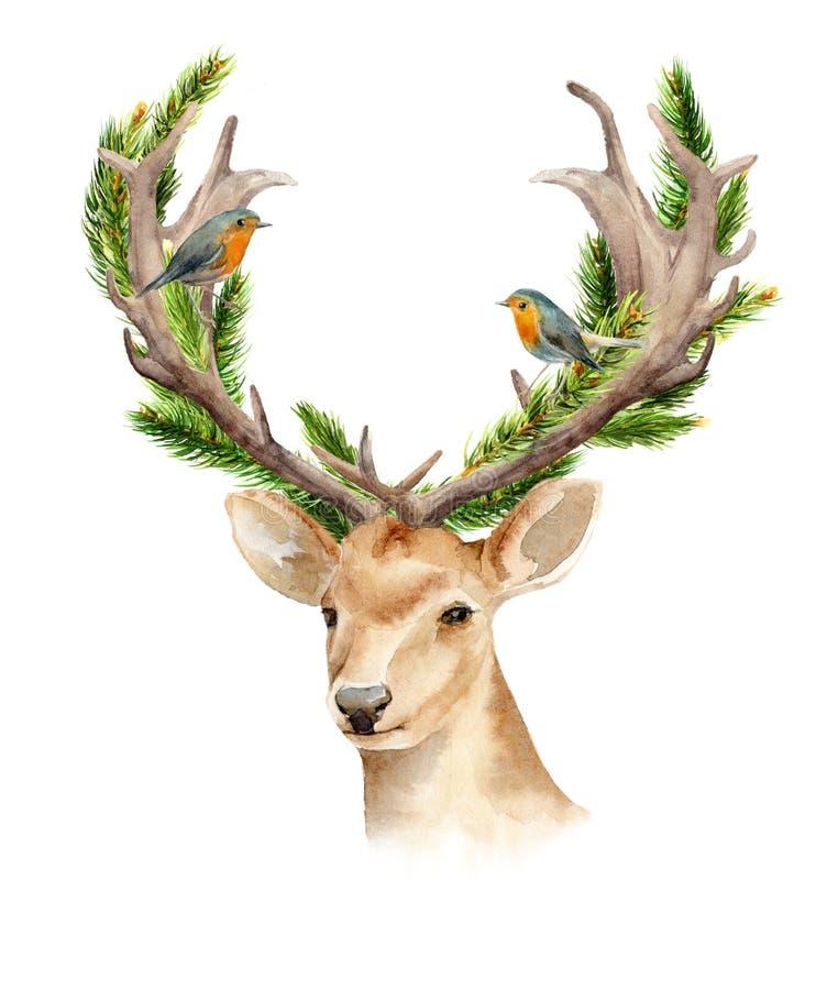 Het hoofd van een mannelijk hert met hoornen en geweven takken van een boom Geïsoleerde achtergrond Bohomalplaatje om affiches te stock illustratie