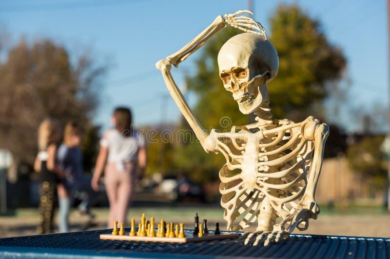 Het hoofd van skeletkrassen royalty-vrije stock afbeelding