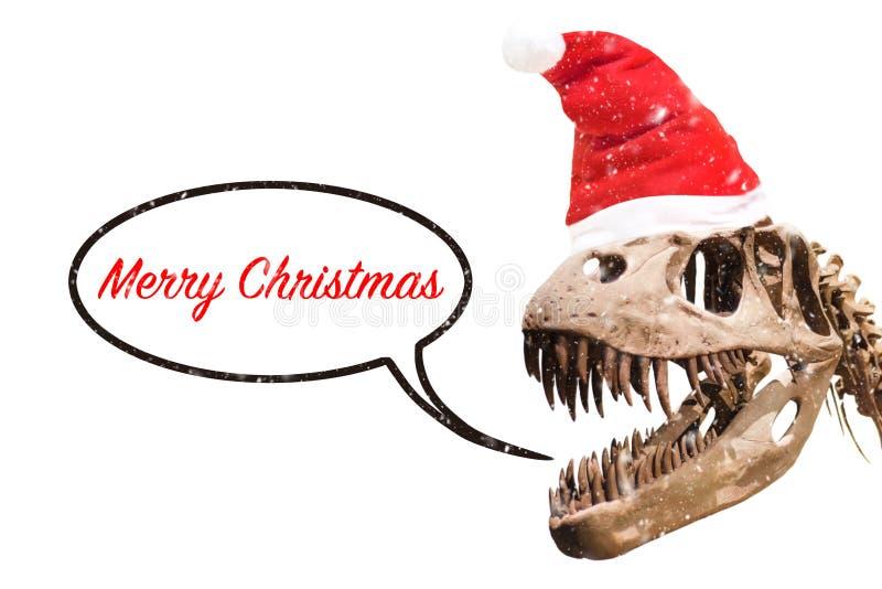 Het hoofd van tyrannosaurusrex met van de Kerstmishoed en sneeuw vlokken gedachte impuls met vrolijke Kerstmisteksten op geïsolee royalty-vrije illustratie