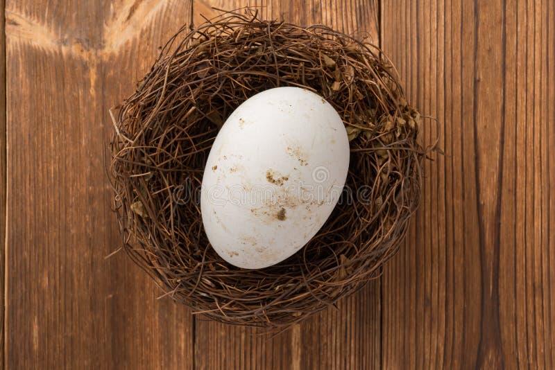 Download Het Hoogste Ei Van De Meningsgans Op Nest Op Hout Stock Afbeelding - Afbeelding bestaande uit bescherming, groot: 107706347