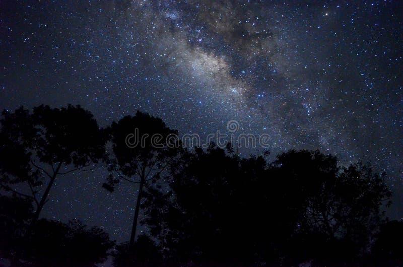 Het hoogtepunt van de hemel van sterren royalty-vrije stock foto's