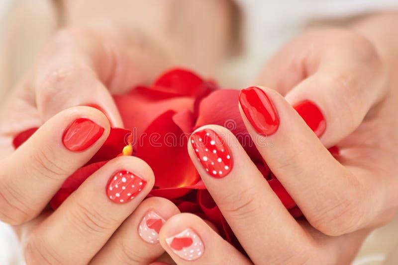 Het hoogtepunt van vrouwenhanden van rode bloemblaadjes stock afbeelding