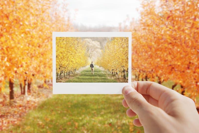 Het houden van Onmiddellijke foto royalty-vrije stock afbeeldingen