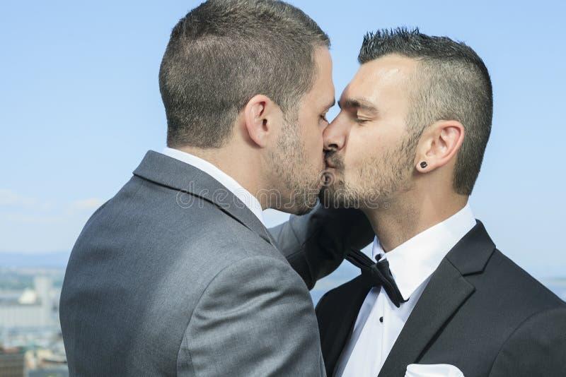 Het houden van van vrolijk mannelijk paar op hun huwelijksdag stock afbeelding
