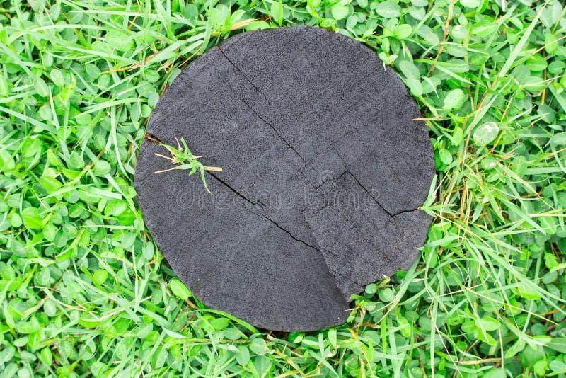 Het hout en het gras op grondtextuur stock fotografie