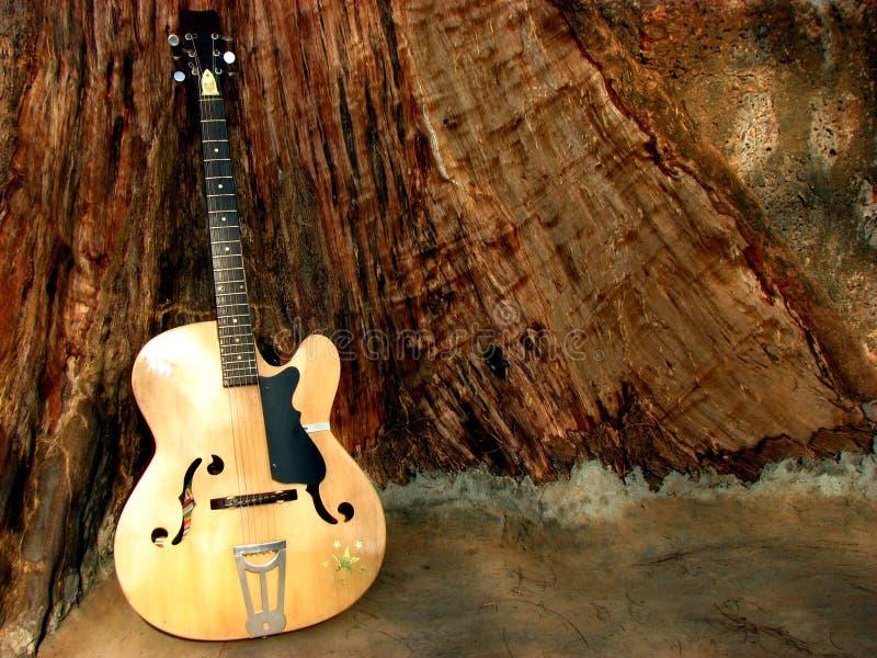 Het Hout van de gitaar stock afbeeldingen