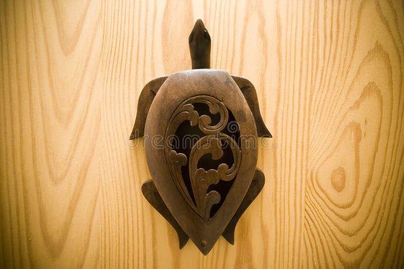 Het hout van de schildpad royalty-vrije stock foto