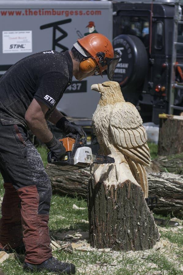 Het houten beeldhouwwerk van het kettingzaaghoutsnijwerk van een adelaar stock fotografie