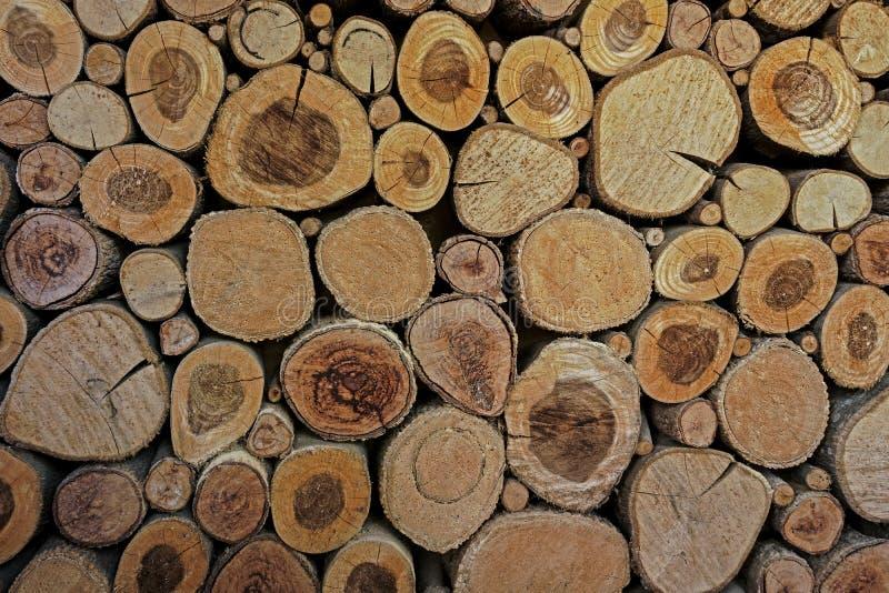 Het houten cirkelspatroon van cutted boomboomstammen De ronde stukken zijn van verschillende grootte Abstracte achtergrond, Houte stock afbeeldingen