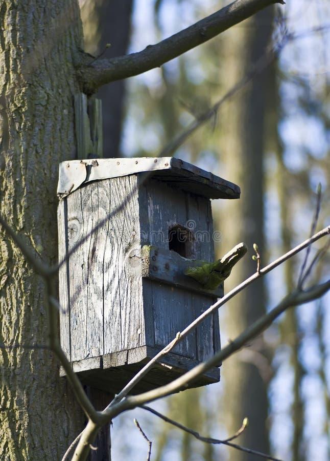 Het houten detail van het vogelhuis stock foto