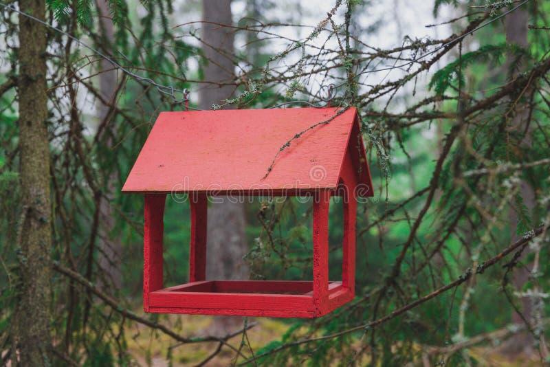 Het houten vogelvoeder hangen in een pijnboombos stock fotografie