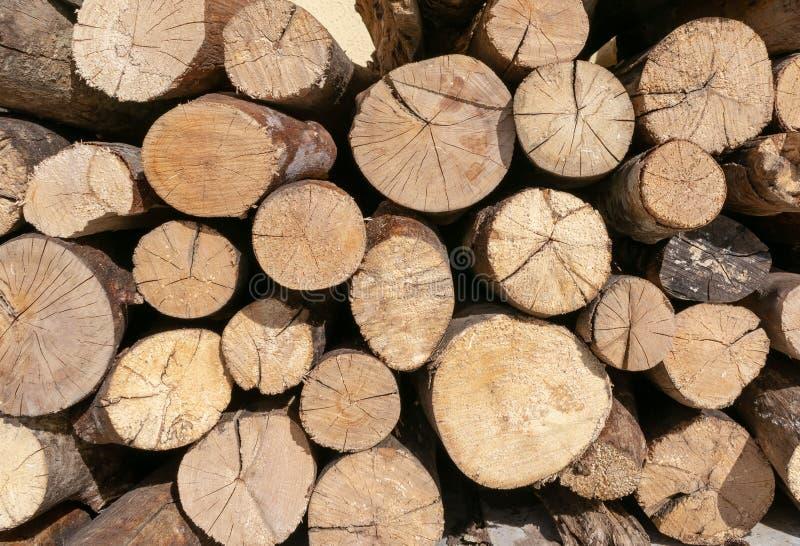 Het houtlogboek sneed houten, natuurlijke geweven achtergrond Vele logboeken van de heartwoodmuur stapelden diverse groottestapel stock foto's