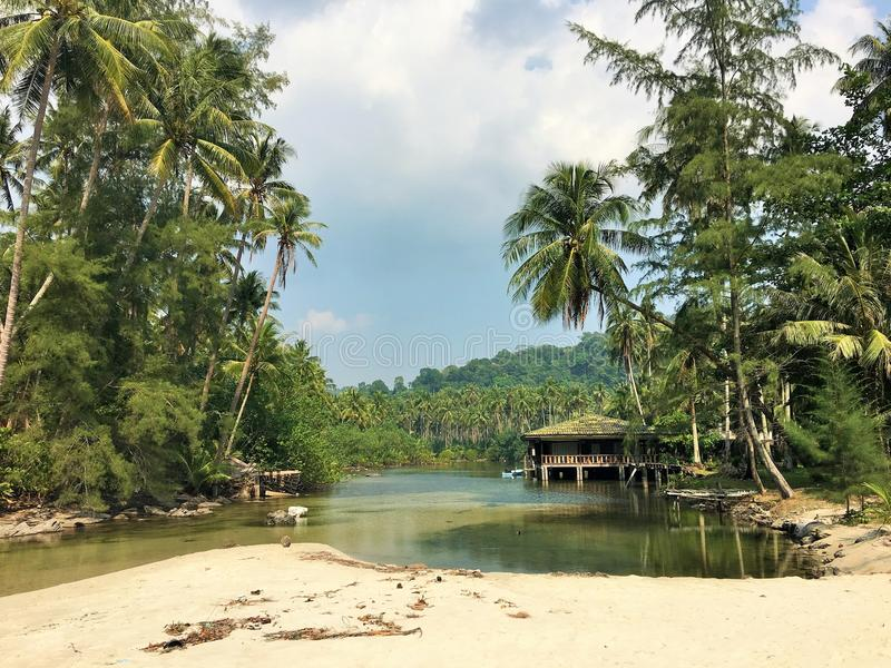 Het huis op de rivier in de wildernis Groene palmen Koh Kood Island, Thailand stock afbeeldingen