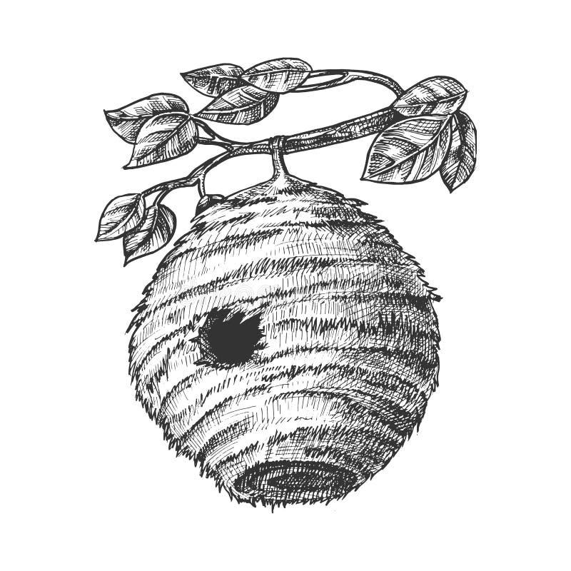 Het Huis van de bijenbijenkorf van Wild Insect op Takvector stock illustratie