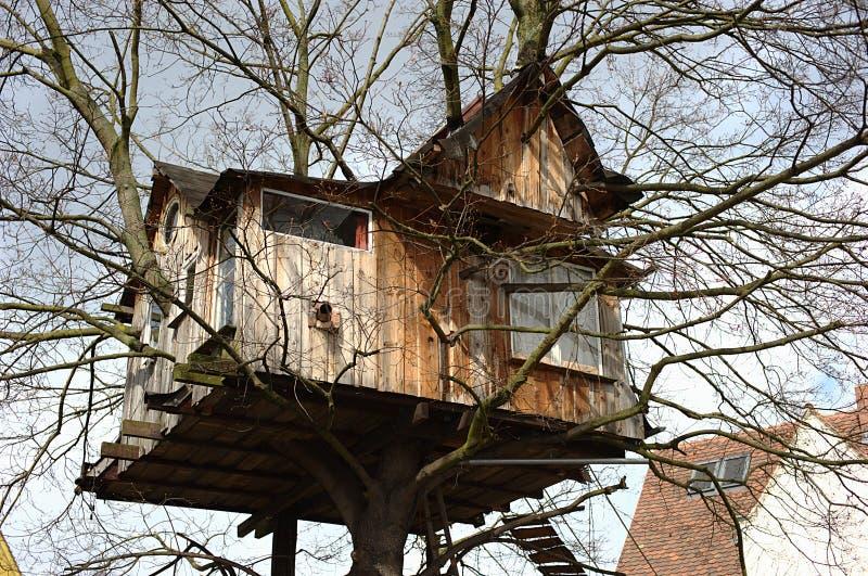 Het huis van de boom royalty-vrije stock afbeelding