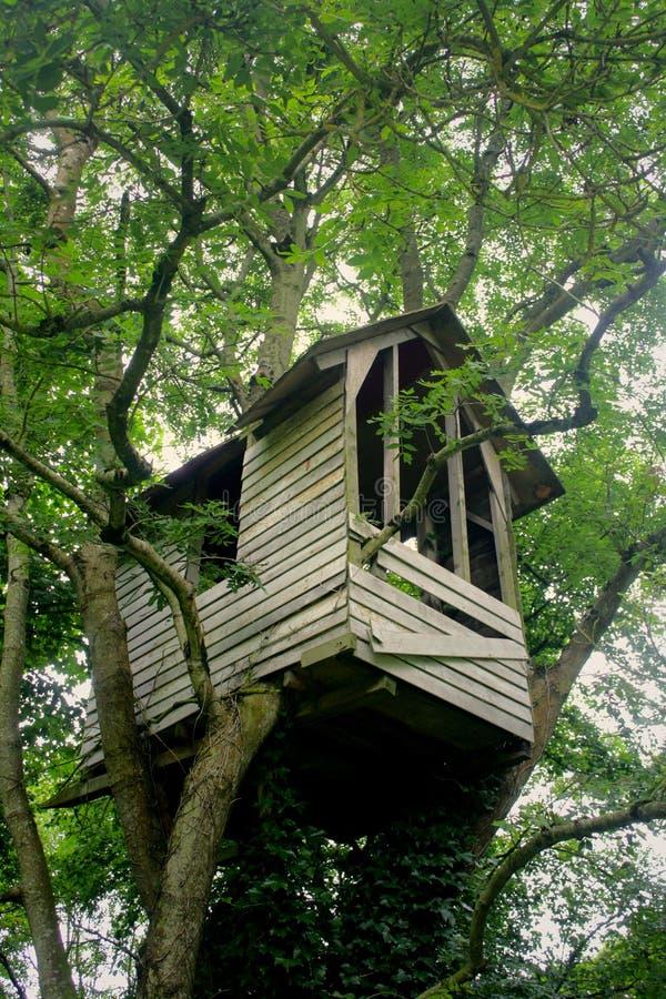 Het Huis van de boom stock afbeelding