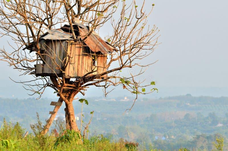Het huis van de boom royalty-vrije stock afbeeldingen