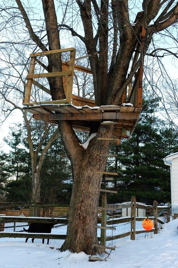 Het Huis van de boom in de Winter stock fotografie