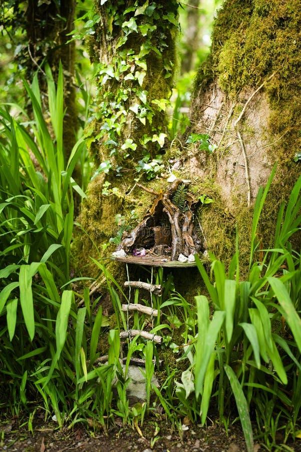 Het huis van de feeboom royalty-vrije stock foto's
