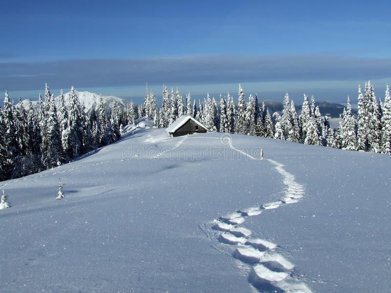 Het huis van de winter royalty-vrije stock foto