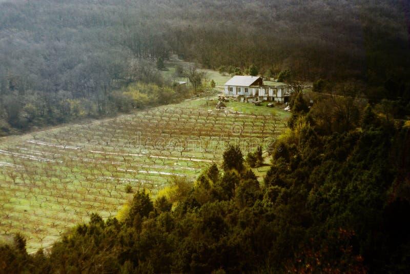 Het huis van een landbouwer en een perceel van land met een boomgaard in de bergen Het landbouwbedrijf wordt omringd door bos en  royalty-vrije stock fotografie