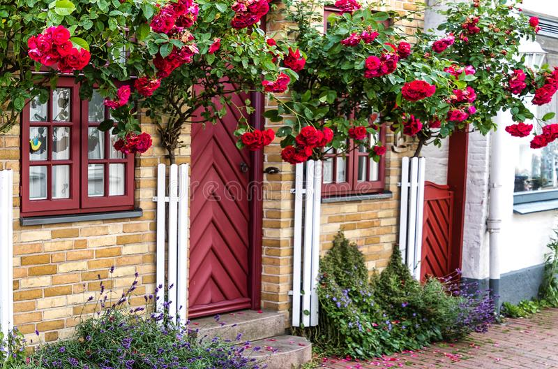 Het huis van een schilderachtige vroegere visser met een lichtjes Deense die aanraking veel liefs, met lange rode rozen bij een h royalty-vrije stock foto