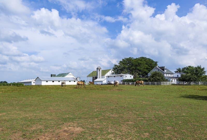 Het huis van het landbouwbedrijf met gebied en silo royalty-vrije stock foto