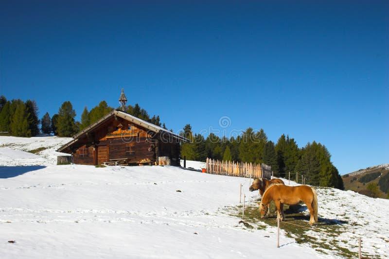 Het huis van het logboek in Alpen royalty-vrije stock foto