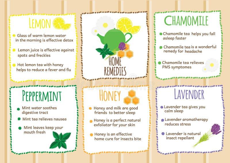 Het huis verhelpt infographics Natuurlijke genezers, natuurlijke zelf gemaakte behandelingen Zelfhulprecepten met vruchten en her stock illustratie