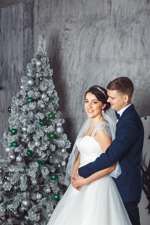 Het huwelijk van de winter Minnaarsbruid en bruidegom in Kerstmisdecoratie HGroom en bruid samen Het Koesteren van het paar De da stock afbeelding
