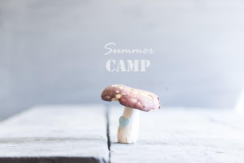 Het idee van het de zomerkamp royalty-vrije stock afbeeldingen