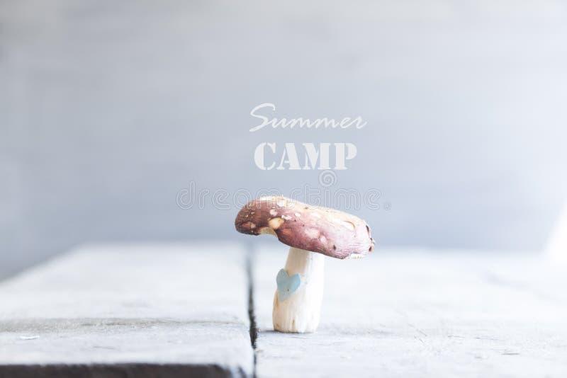 Het idee van het de zomerkamp stock foto's