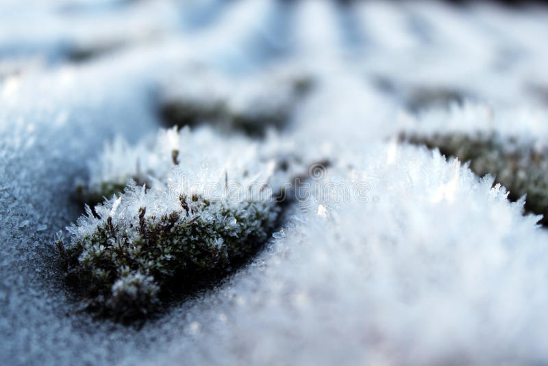 Het ijs is aardig ijzig royalty-vrije stock foto's