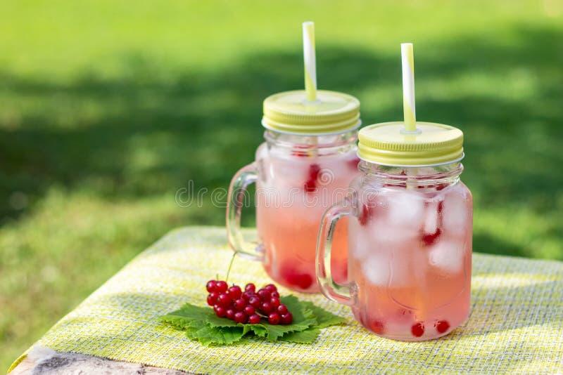Het ijskoude fruit goot water in openlucht met verse geplukte rode aalbesbessen in glasmokken met stro, de zomertijd, vitaminedra stock afbeelding
