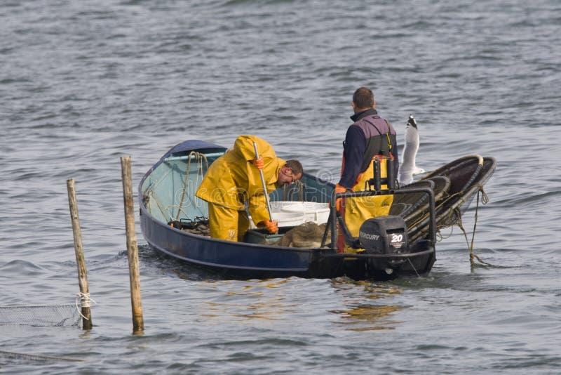 Het IJsselmeer Vissers op, рыболовы на IJsselmeer стоковая фотография rf