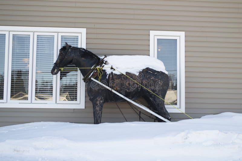 Het Ijzerpaard van Newfoundland royalty-vrije stock afbeeldingen