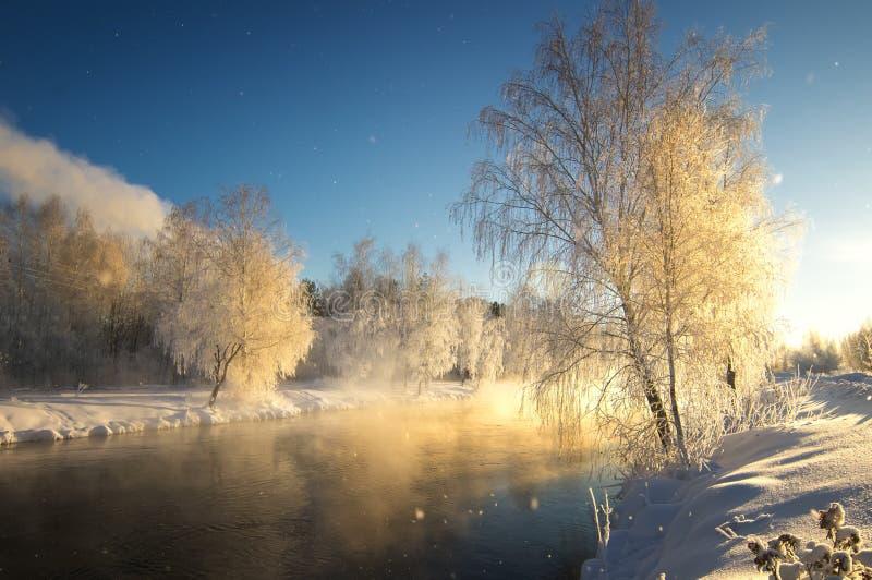 Het ijzige landschap van de de winterochtend met mist en bosrivier, Rusland, Ural stock foto's