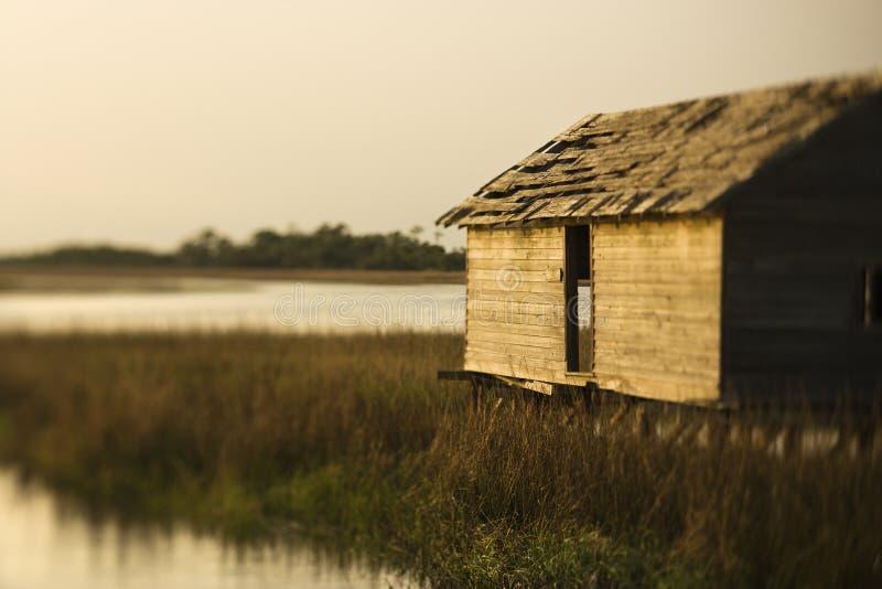 Het inbouwen van moeras op Kaal HoofdEiland. stock afbeeldingen