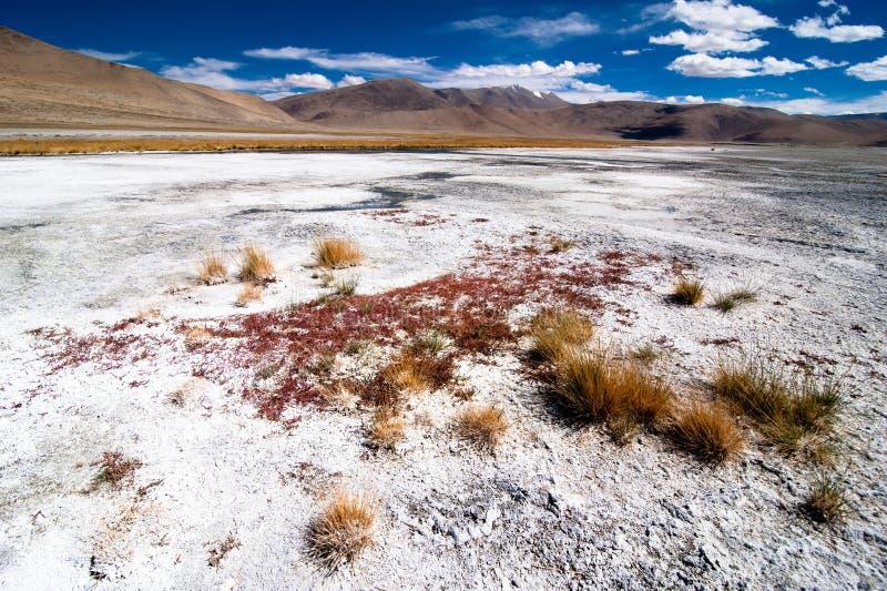 Het Indische landschap van Himalayagebergte met zout meer Tso Kar stock foto's